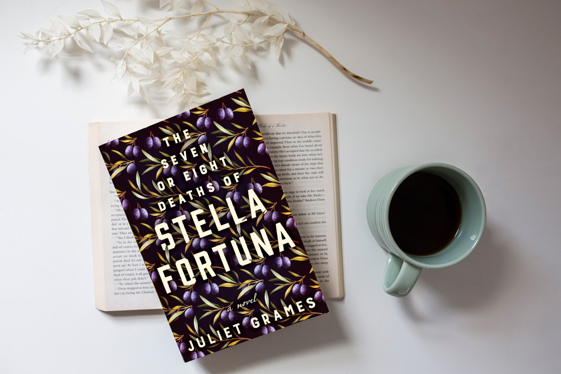 StellaFortuna